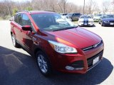 2015 Sunset Metallic Ford Escape SE #103623784