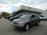 2010 Polished Metal Metallic Honda CR-V EX-L AWD #103623817