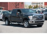 2015 Green Gem Ford F250 Super Duty XLT Crew Cab 4x4 #103653280