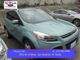 2013 Frosted Glass Metallic Ford Escape Titanium 2.0L EcoBoost #103674186