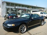 2002 Black Ford Mustang GT Convertible #103716552