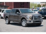 2015 Caribou Metallic Ford F150 XLT SuperCrew 4x4 #103784252