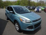 2013 Frosted Glass Metallic Ford Escape SE 1.6L EcoBoost #103869295