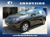 2013 Kona Coffee Metallic Honda CR-V LX #104006906
