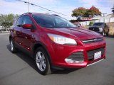 2013 Ruby Red Metallic Ford Escape SE 2.0L EcoBoost 4WD #104039004