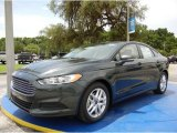 2015 Guard Metallic Ford Fusion SE #104096054