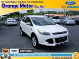 2014 White Platinum Ford Escape Titanium 1.6L EcoBoost 4WD #104284546