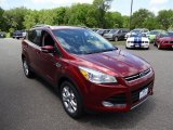 2015 Sunset Metallic Ford Escape Titanium 4WD #104376038