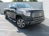 2015 Magnetic Gray Metallic Toyota Tundra Platinum CrewMax 4x4 #104481169