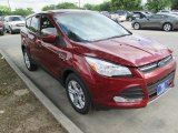 2015 Sunset Metallic Ford Escape SE #104518651