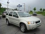 2003 Gold Ash Metallic Ford Escape Limited 4WD #10469116