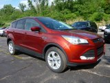 2015 Sunset Metallic Ford Escape SE 4WD #104900683