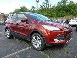 2015 Sunset Metallic Ford Escape SE 4WD #104900681