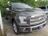 2015 Magnetic Metallic Ford F150 Platinum SuperCrew 4x4 #104961071