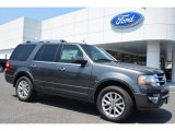2015 Magnetic Metallic Ford Expedition Limited #105017274