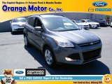 2014 Sterling Gray Ford Escape SE 2.0L EcoBoost 4WD #105017314