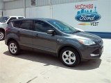 2015 Magnetic Metallic Ford Escape SE #105124913