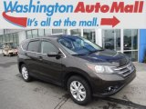 2014 Kona Coffee Metallic Honda CR-V EX AWD #105124962
