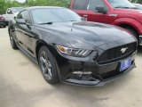 2015 Black Ford Mustang EcoBoost Coupe #105175715