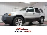 2006 Silver Metallic Ford Escape XLT V6 4WD #105212735