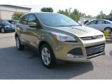 2013 Ginger Ale Metallic Ford Escape SE 2.0L EcoBoost 4WD #105251053