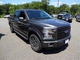 2015 Magnetic Metallic Ford F150 XLT SuperCrew 4x4 #105348008