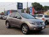 2010 Platinum Graphite Metallic Nissan Murano LE AWD #105423524
