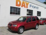2006 Redfire Metallic Ford Escape Limited 4WD #10542899