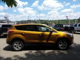 2016 Electric Spice Metallic Ford Escape SE 4WD #105817057
