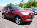 2016 Sunset Metallic Ford Escape SE 4WD #105990284