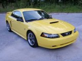 2003 Zinc Yellow Ford Mustang GT Coupe #10607257