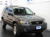 2006 Dark Shadow Grey Metallic Ford Escape XLT V6 4WD #10607296