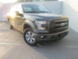2015 Magnetic Metallic Ford F150 XL SuperCab #106265461
