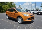 2016 Ford Escape Electric Spice Metallic