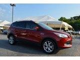 2014 Sunset Ford Escape Titanium 1.6L EcoBoost #106363074