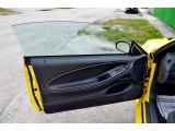 2002 Ford Mustang V6 Coupe Door Panel