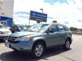 2010 Opal Sage Metallic Honda CR-V LX AWD #106397881
