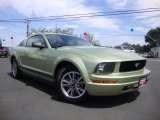 2005 Legend Lime Metallic Ford Mustang V6 Deluxe Coupe #106539368