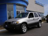 2006 Silver Metallic Ford Escape XLT V6 4WD #10637344