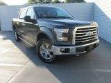 2015 Magnetic Metallic Ford F150 XLT SuperCrew 4x4 #106692306