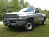 2001 Bright Silver Metallic Dodge Ram 1500 ST Regular Cab #107011475