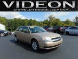 2005 Light Driftwood Metallic Chevrolet Malibu Maxx LS Wagon #107202517