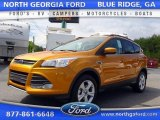 2016 Electric Spice Metallic Ford Escape SE #107340263