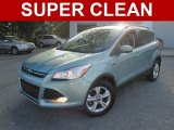 2013 Frosted Glass Metallic Ford Escape SE 1.6L EcoBoost #107379532