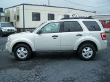 2009 Light Sage Metallic Ford Escape XLT V6 #10735918