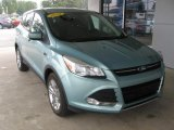 2013 Frosted Glass Metallic Ford Escape SE 2.0L EcoBoost 4WD #107685874