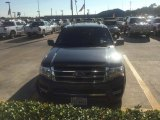 2015 Magnetic Metallic Ford Expedition EL Limited #107724685