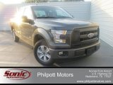 2015 Magnetic Metallic Ford F150 XL SuperCab #107761902