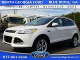 2016 White Platinum Metallic Ford Escape Titanium 4WD #107797150