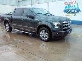 2015 Guard Metallic Ford F150 Lariat SuperCrew #107861762